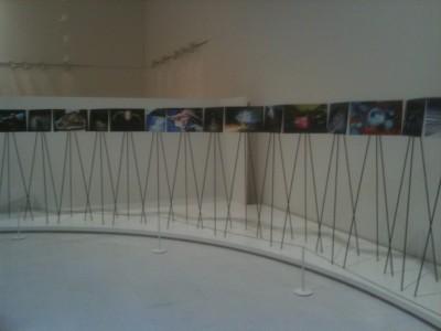 森美術館1